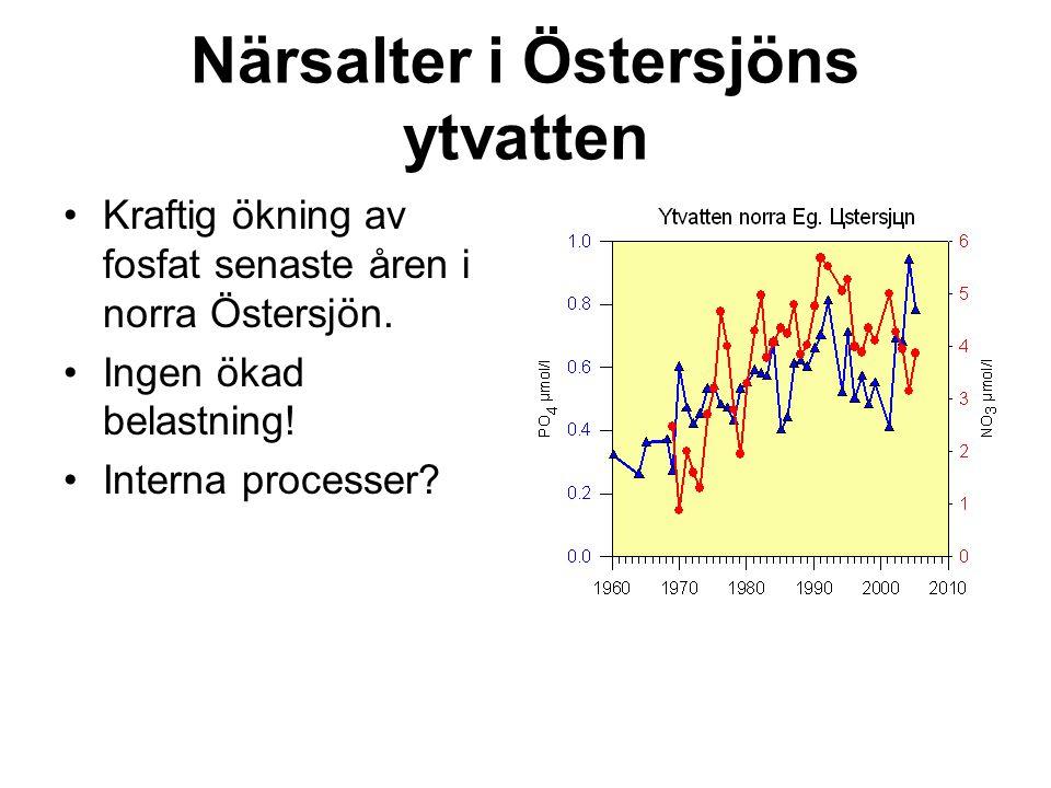 Närsalter i Östersjöns ytvatten Kraftig ökning av fosfat senaste åren i norra Östersjön. Ingen ökad belastning! Interna processer?