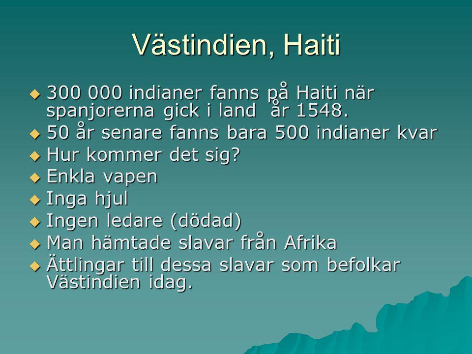 Vasco da Gama  Vasco da Gama  Sjövägen till Indien  En stad på Afrikas kust  Kryddor, siden, ädelstenar och elfenben