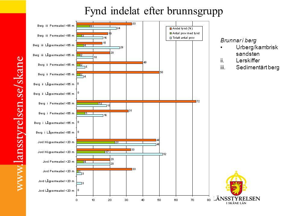 Fynd indelat efter brunnsgrupp Brunnar i berg Urberg/kambrisk sandsten ii.Lerskiffer iii.Sedimentärt berg