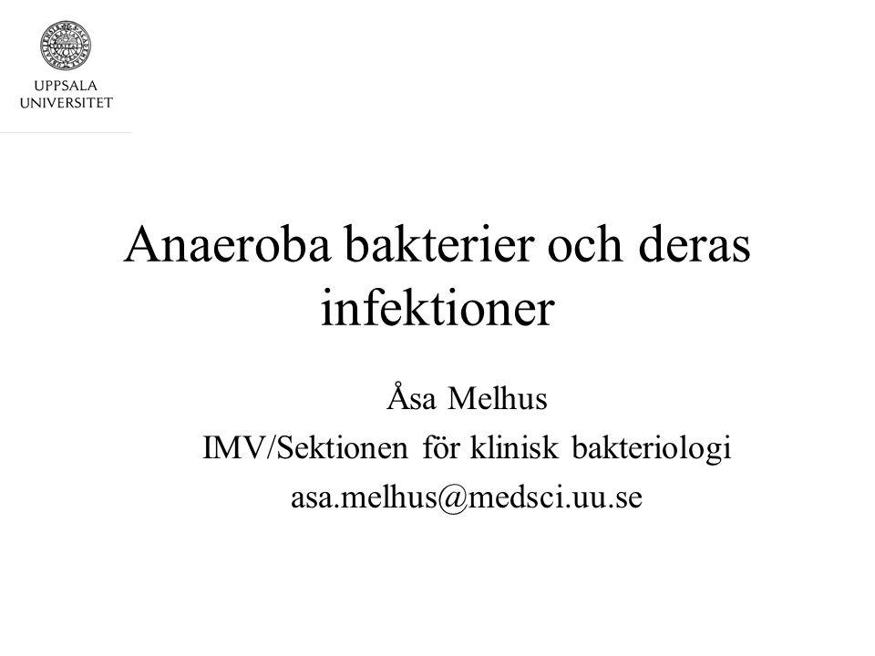 Anaeroba bakterier och deras infektioner Åsa Melhus IMV/Sektionen för klinisk bakteriologi asa.melhus@medsci.uu.se