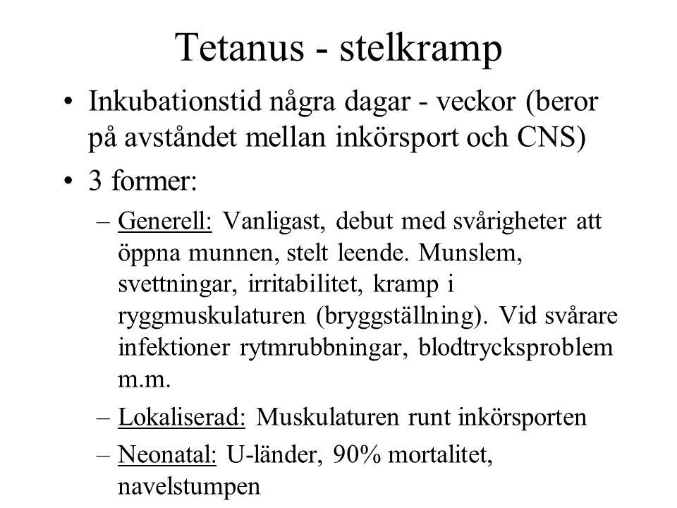 Tetanus - stelkramp Inkubationstid några dagar - veckor (beror på avståndet mellan inkörsport och CNS) 3 former: –Generell: Vanligast, debut med svåri