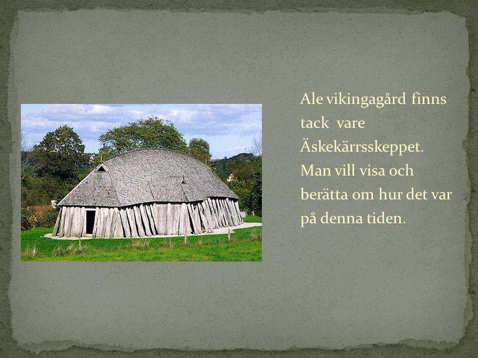 Ale vikingagård finns tack vare Äskekärrsskeppet. Man vill visa och berätta om hur det var på denna tiden.