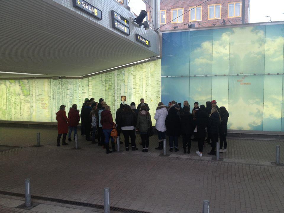 Umeå 19 februari 2014