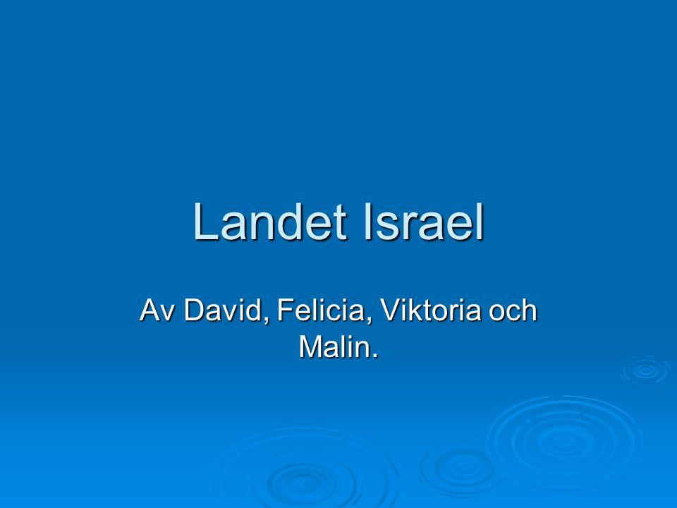 Landet Israel Av David, Felicia, Viktoria och Malin.