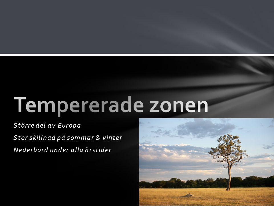 Större del av Europa Stor skillnad på sommar & vinter Nederbörd under alla årstider