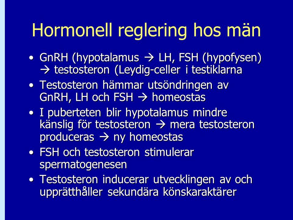 Hormonell reglering hos män GnRH (hypotalamus  LH, FSH (hypofysen)  testosteron (Leydig-celler i testiklarnaGnRH (hypotalamus  LH, FSH (hypofysen)