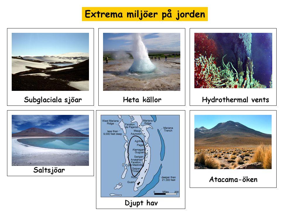 Extrema miljöer på jorden Subglaciala sjöarHeta källorHydrothermal vents Saltsjöar Djupt hav Atacama-öken