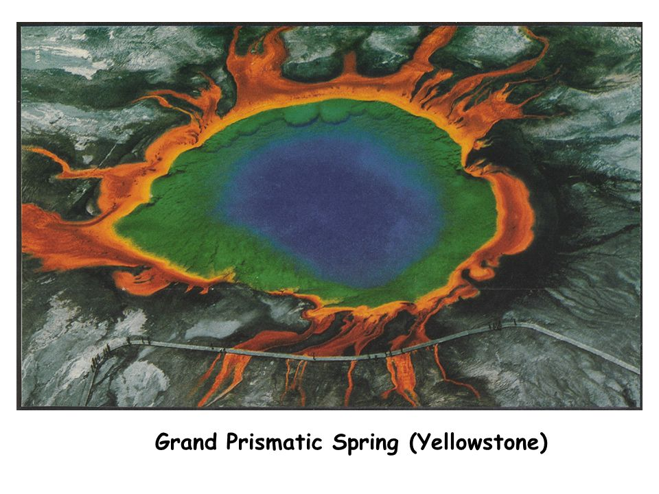 Grand Prismatic Spring (Yellowstone)