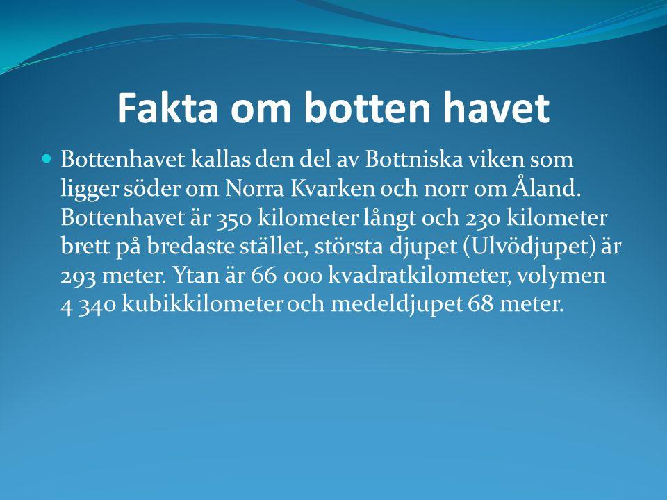 Fakta om botten havet Bottenhavet kallas den del av Bottniska viken som ligger söder om Norra Kvarken och norr om Åland. Bottenhavet är 350 kilometer
