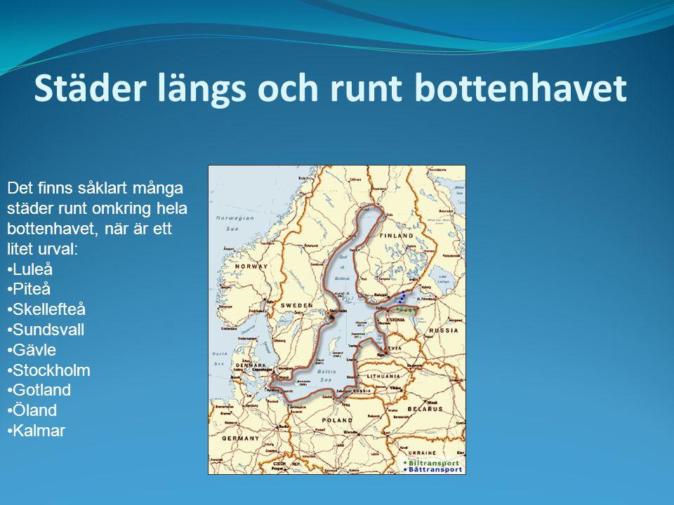 Städer längs och runt bottenhavet Det finns såklart många städer runt omkring hela bottenhavet, när är ett litet urval: Luleå Piteå Skellefteå Sundsva