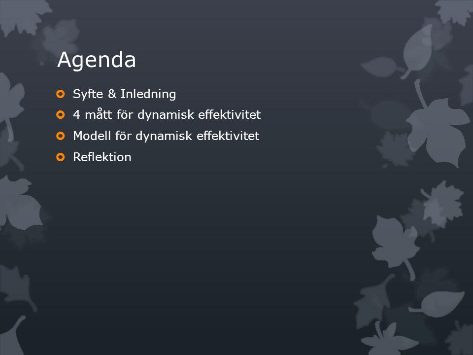 Agenda  Syfte & Inledning  4 mått för dynamisk effektivitet  Modell för dynamisk effektivitet  Reflektion