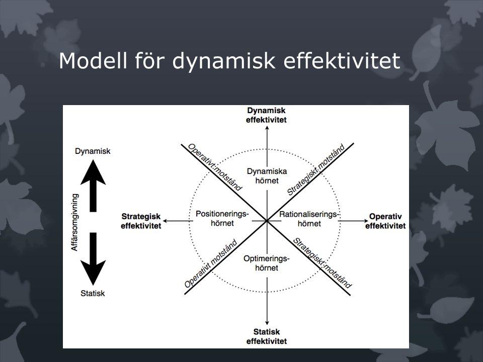 Modell för dynamisk effektivitet
