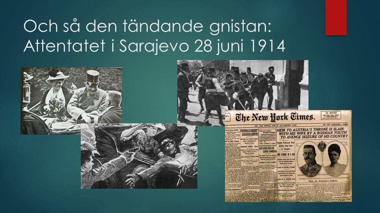 Och så den tändande gnistan: Attentatet i Sarajevo 28 juni 1914