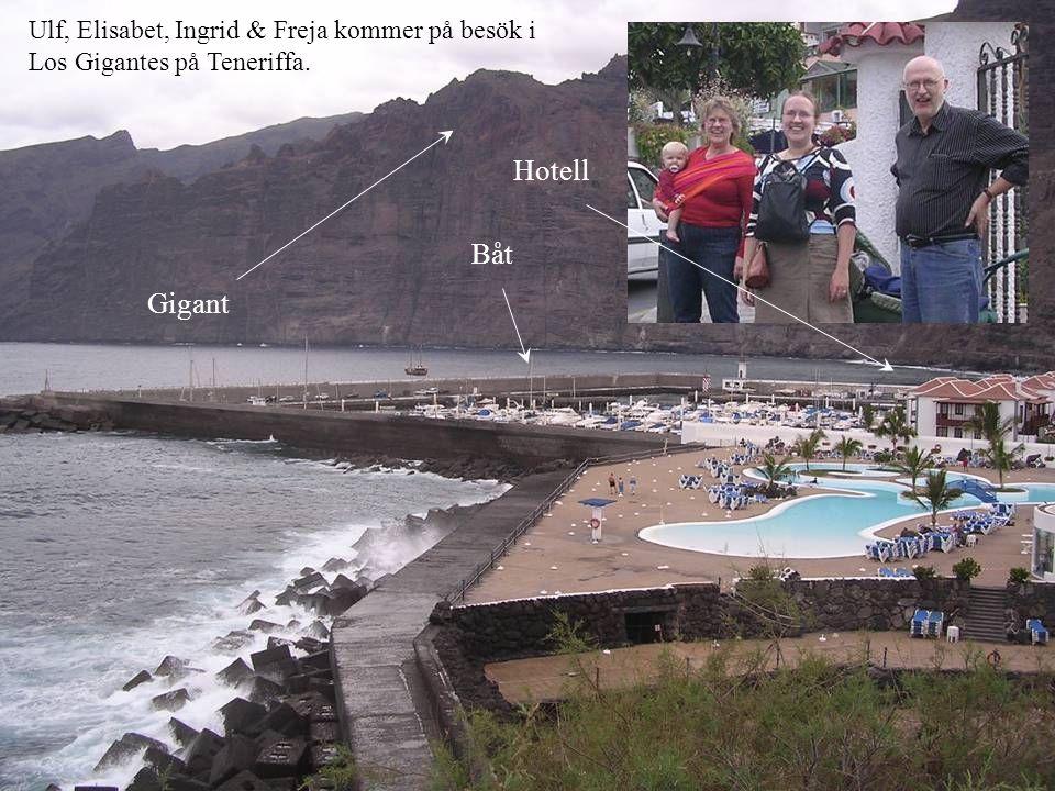 Ulf, Elisabet, Ingrid & Freja kommer på besök i Los Gigantes på Teneriffa. Båt Gigant Hotell