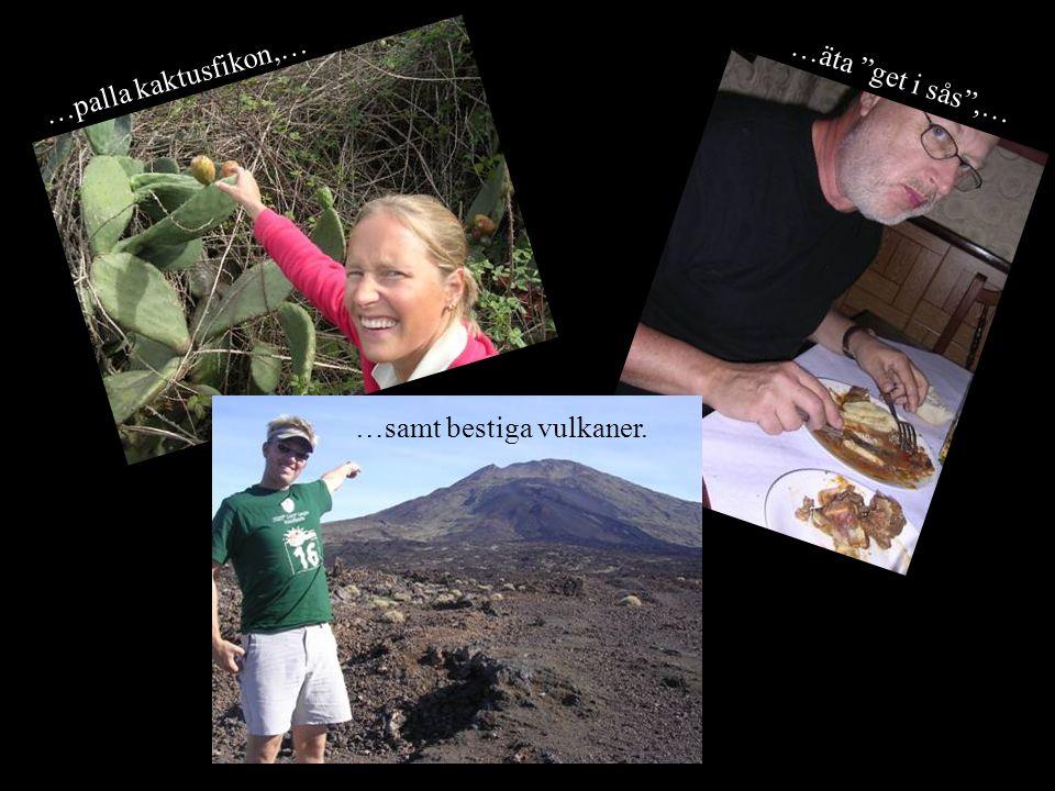 …äta get i sås ,… …palla kaktusfikon,… …samt bestiga vulkaner.