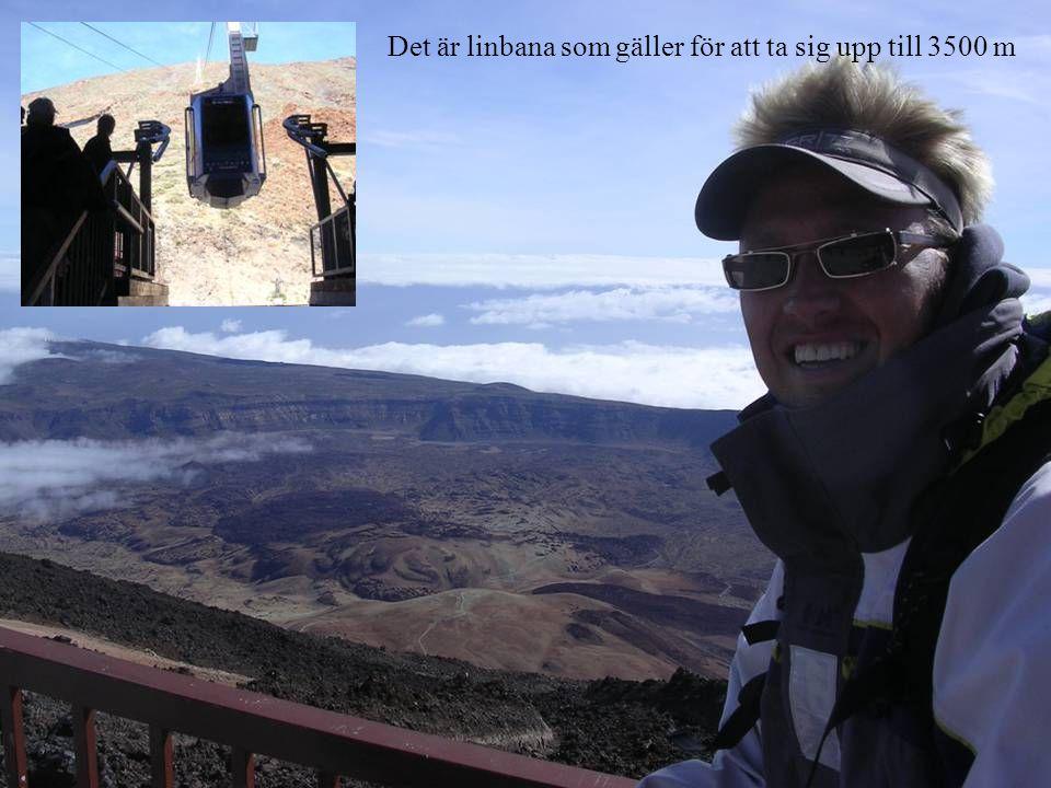 Det är linbana som gäller för att ta sig upp till 3500 m