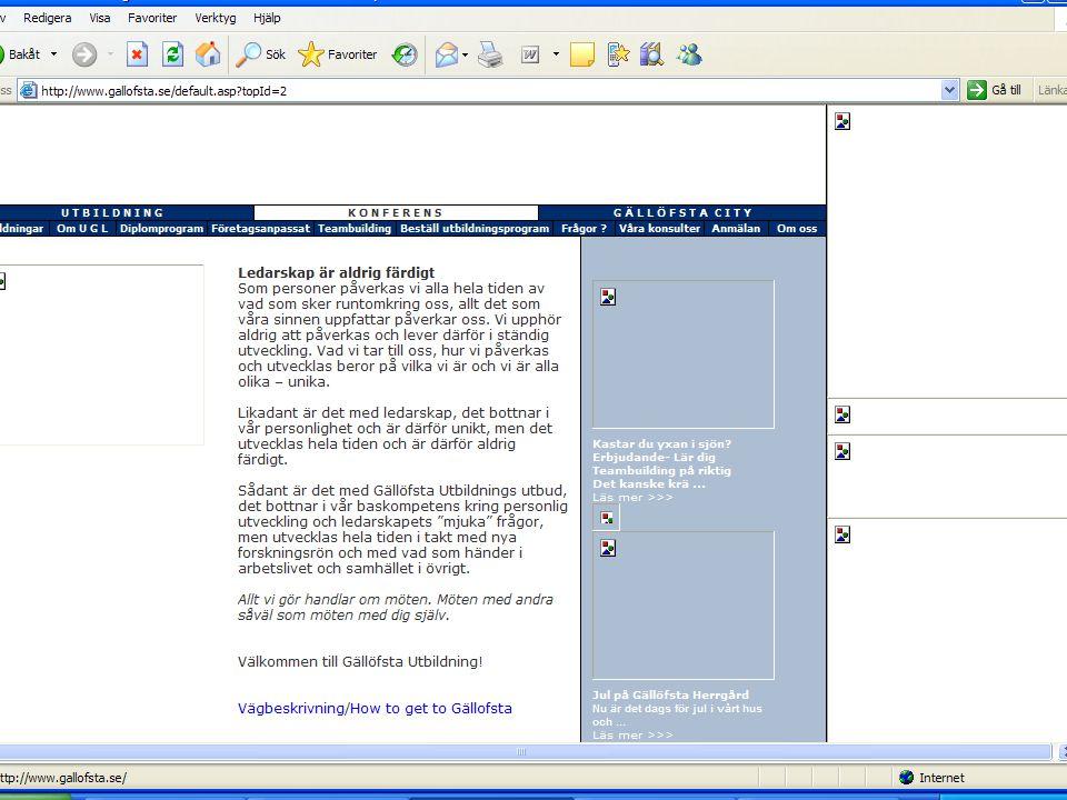 Från sär- till allmänt intresse RRV 2003 WAI:s riktlinjer + tolkning HO tog initiativ Överens om att det behövdes tolkningsunderlag för tillgänglighet Vägledningen 24-timmarswebben