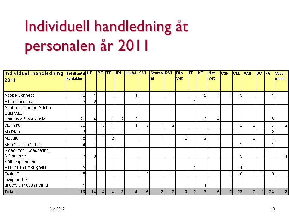 Individuell handledning åt personalen år 2011 6.2.201213