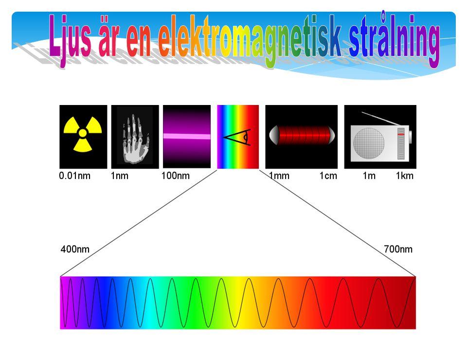  Vi ser med våra ögon ljus som har våglängderna 400 – 700 nm (nm = nanometer = miljarddelsmeter =0,000000001 m  Ögat uppfattar olika våglängder som olika färger Synbart ljus för människor