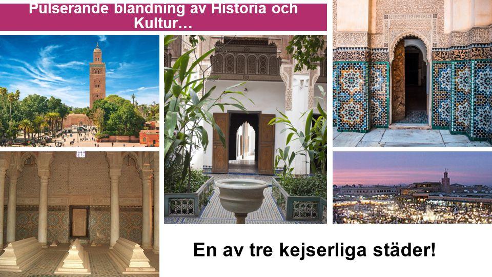 …Exotiska attraktioner Marroccos största marknad!
