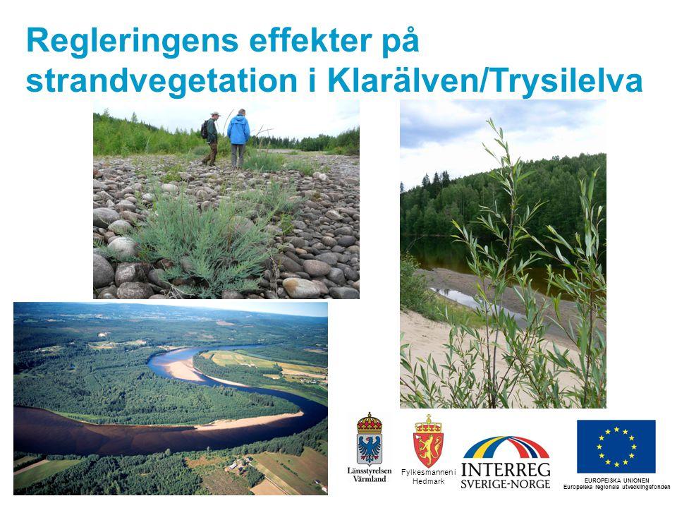 Syfte Resultat från strandvegetationsstudien genomförd av forskare vid Umeå universitet (Lotta Ström, Birgitta Malm Renöfält) * Kan man använda strandvegetationsdata för att påvisa regleringspåverkan.