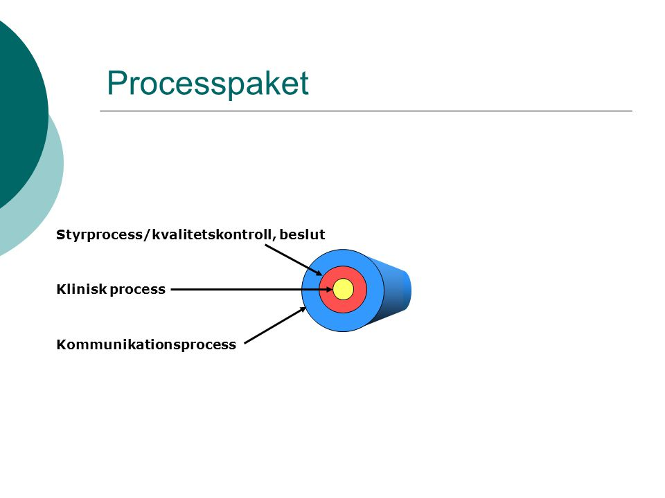 Klinisk process Styrprocess/kvalitetskontroll, beslut Kommunikationsprocess