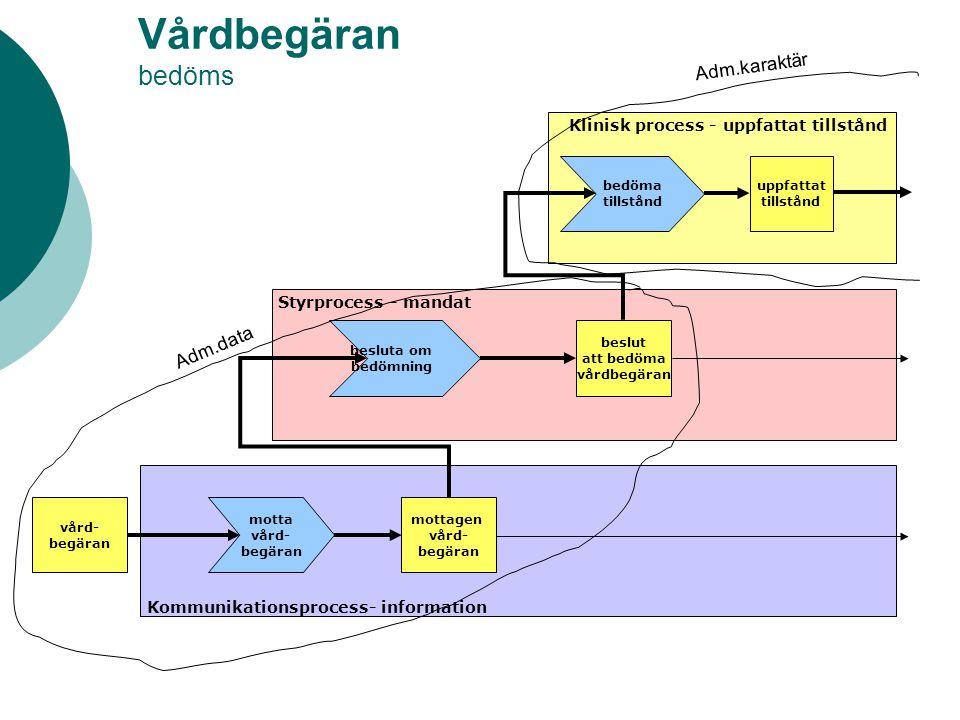 Vårdbegäran bedöms Styrprocess - mandat Klinisk process - uppfattat tillstånd Kommunikationsprocess- information vård- begäran motta vård- begäran mot