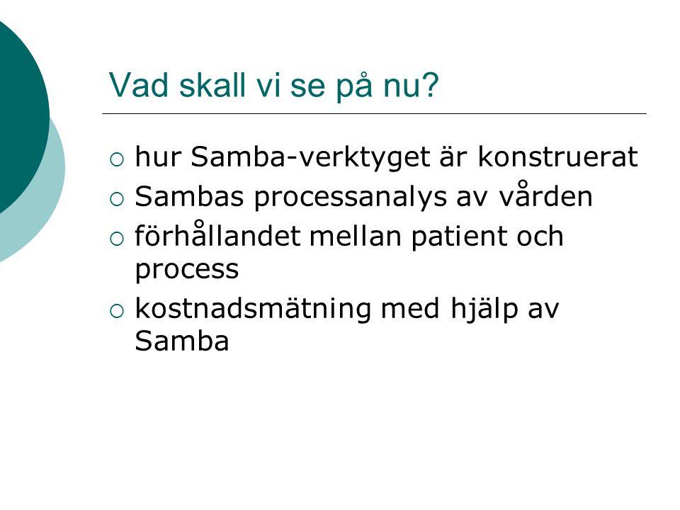 Vad skall vi se på nu?  hur Samba-verktyget är konstruerat  Sambas processanalys av vården  förhållandet mellan patient och process  kostnadsmätni