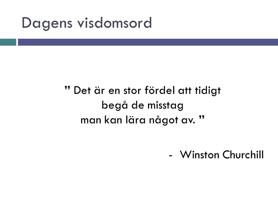Dagens visdomsord Det är en stor fördel att tidigt begå de misstag man kan lära något av.