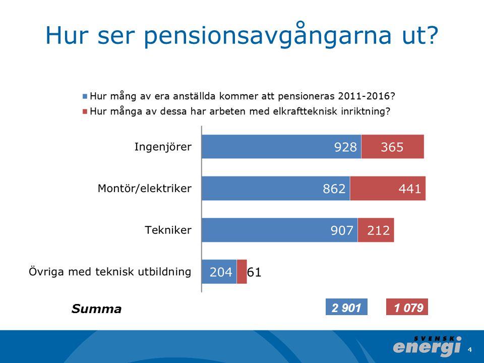 Hur ser pensionsavgångarna ut 4 Summa 2 9011 079