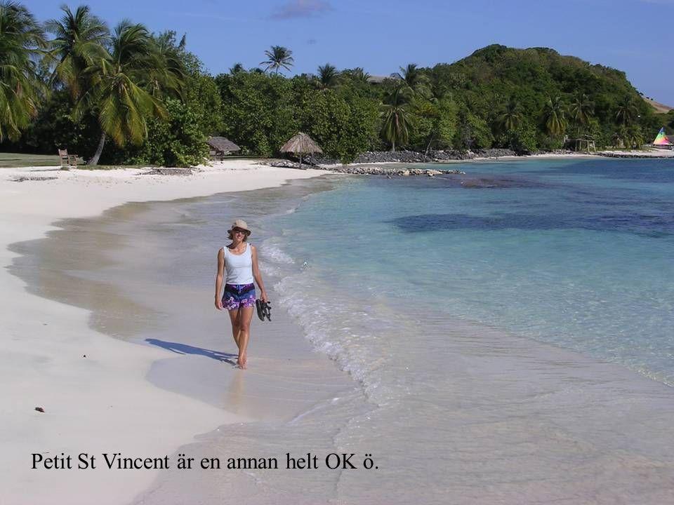 Petit St Vincent är en annan helt OK ö.