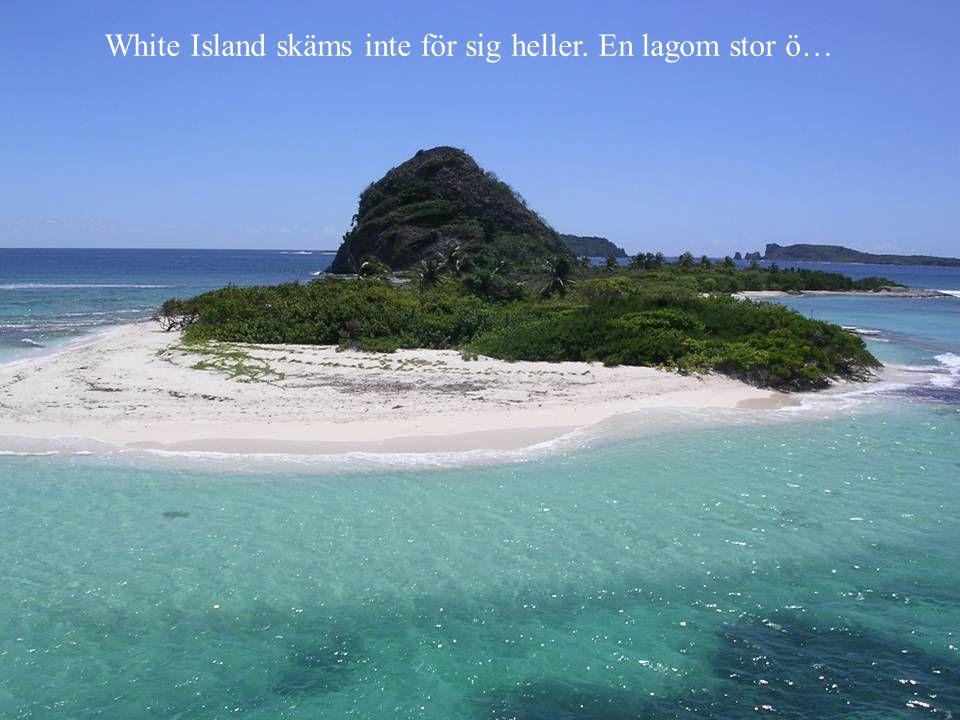 White Island skäms inte för sig heller. En lagom stor ö…