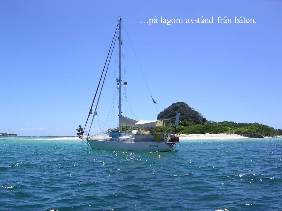 …på lagom avstånd från båten.