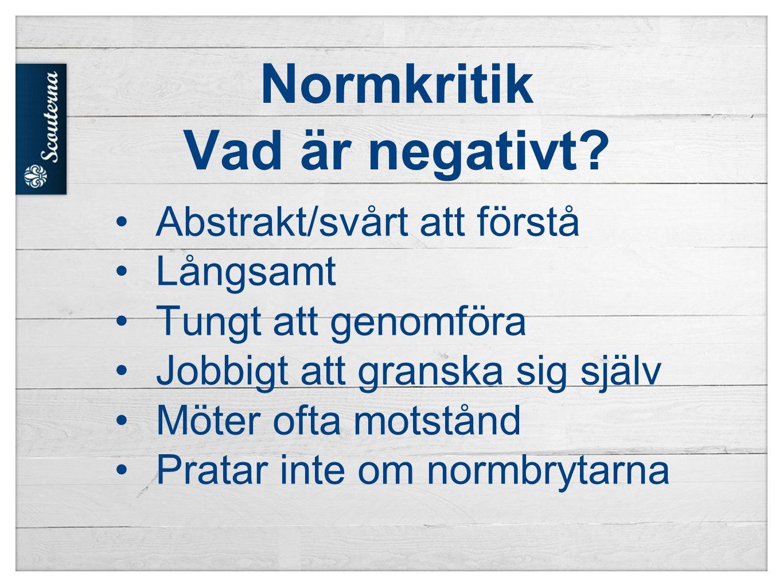 Normkritik Vad är negativt.