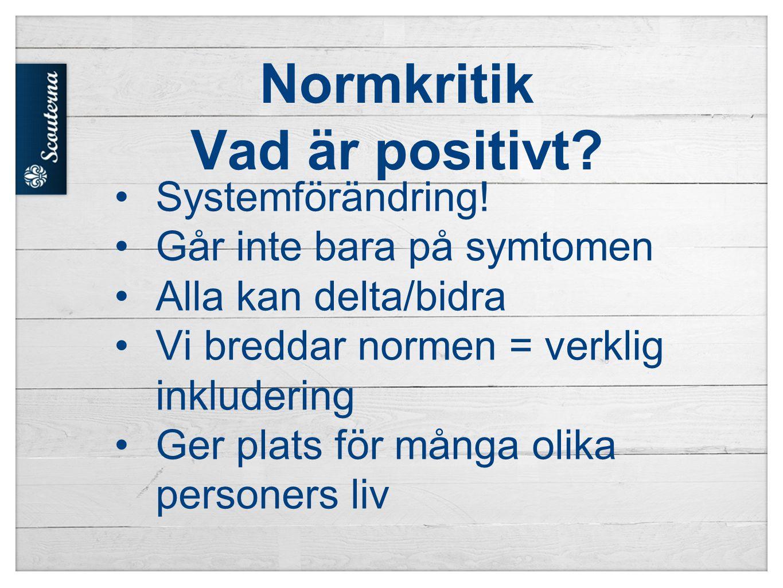 Normkritik Vad är positivt.Systemförändring.
