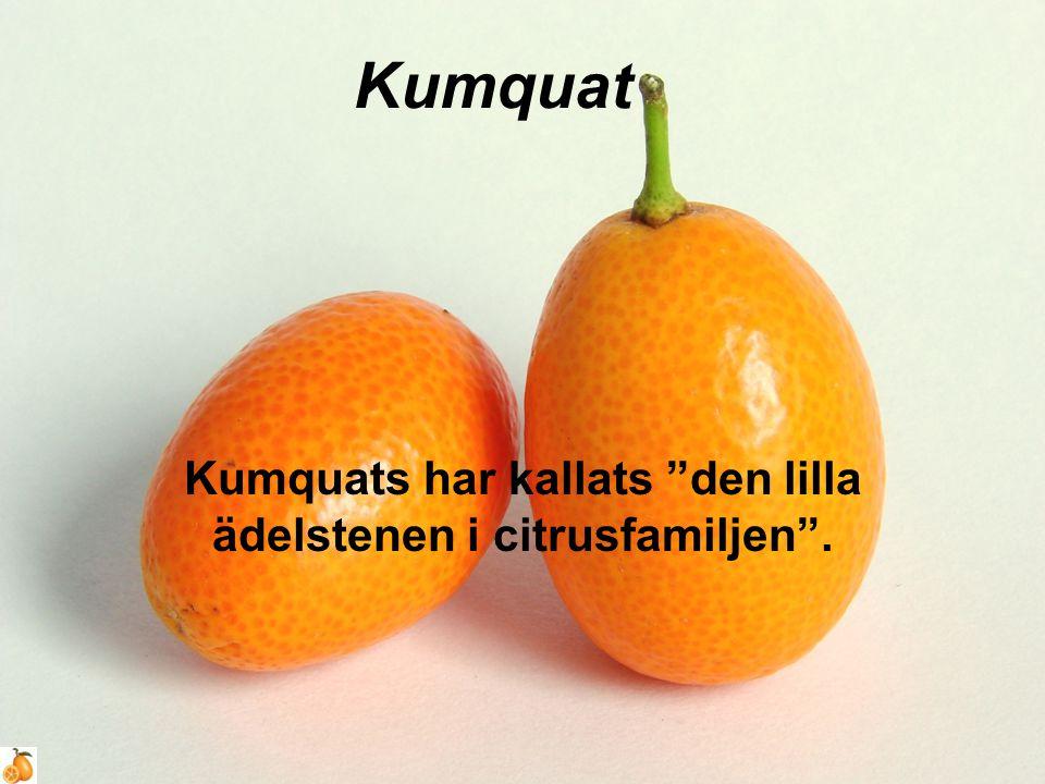 Kumquat Kumquats har kallats den lilla ädelstenen i citrusfamiljen .