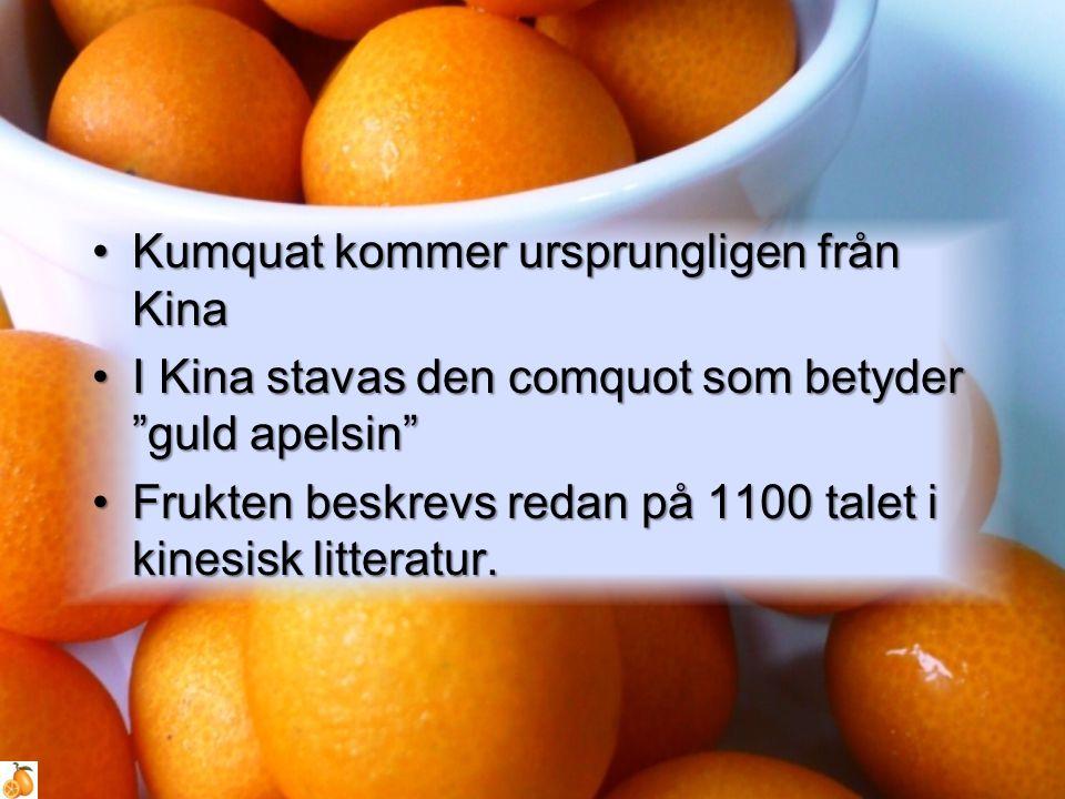 """Kumquat kommer ursprungligen från KinaKumquat kommer ursprungligen från Kina I Kina stavas den comquot som betyder """"guld apelsin""""I Kina stavas den com"""