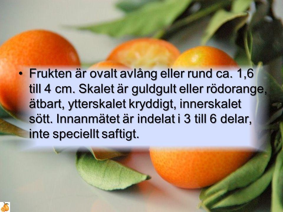 Frukten är ovalt avlång eller rund ca. 1,6 till 4 cm. Skalet är guldgult eller rödorange, ätbart, ytterskalet kryddigt, innerskalet sött. Innanmätet ä