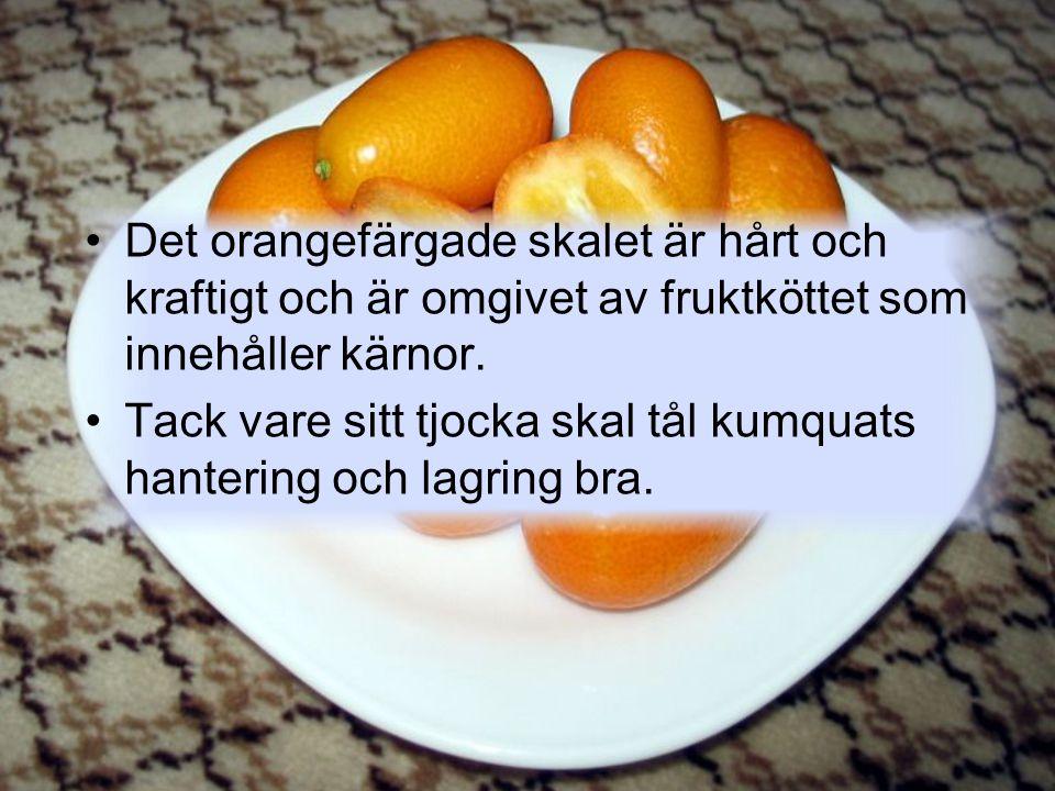 Det orangefärgade skalet är hårt och kraftigt och är omgivet av fruktköttet som innehåller kärnor.