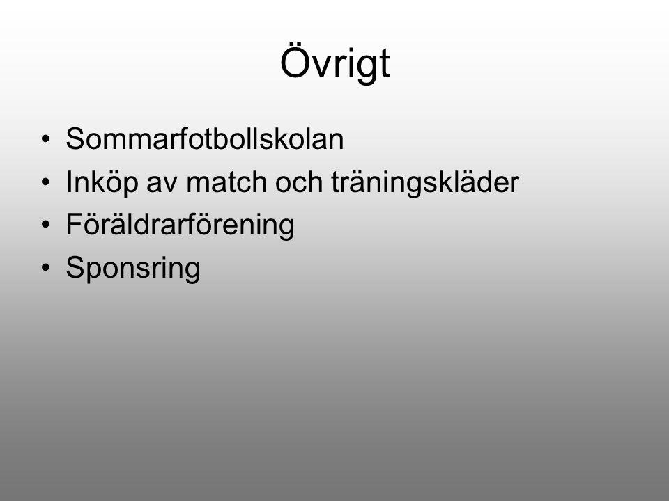 Övrigt Sommarfotbollskolan Inköp av match och träningskläder Föräldrarförening Sponsring