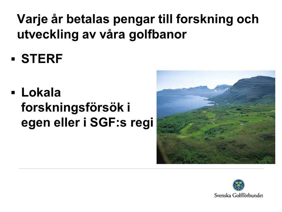 Varje år betalas pengar till forskning och utveckling av våra golfbanor  STERF  Lokala forskningsförsök i egen eller i SGF:s regi