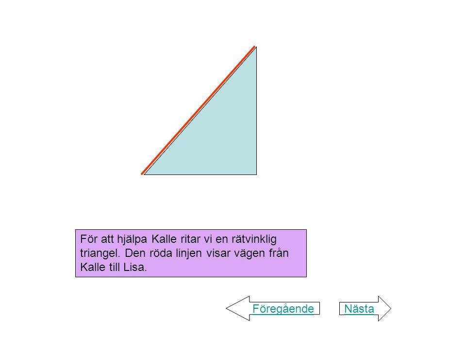 Figuren visar en rätvinklig triangel.Sidorna heter katet och hypotenusa.