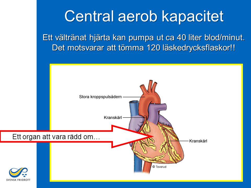 Central aerob kapacitet Ett vältränat hjärta kan pumpa ut ca 40 liter blod/minut.