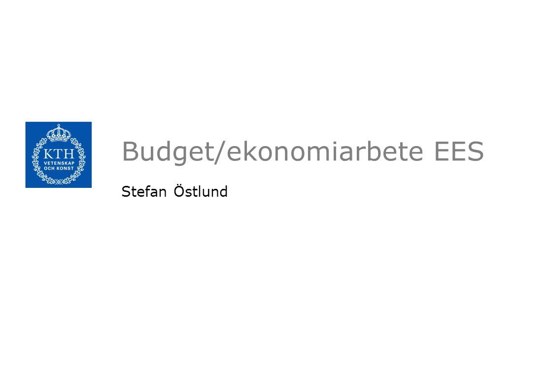 Budget/ekonomiarbete EES Stefan Östlund