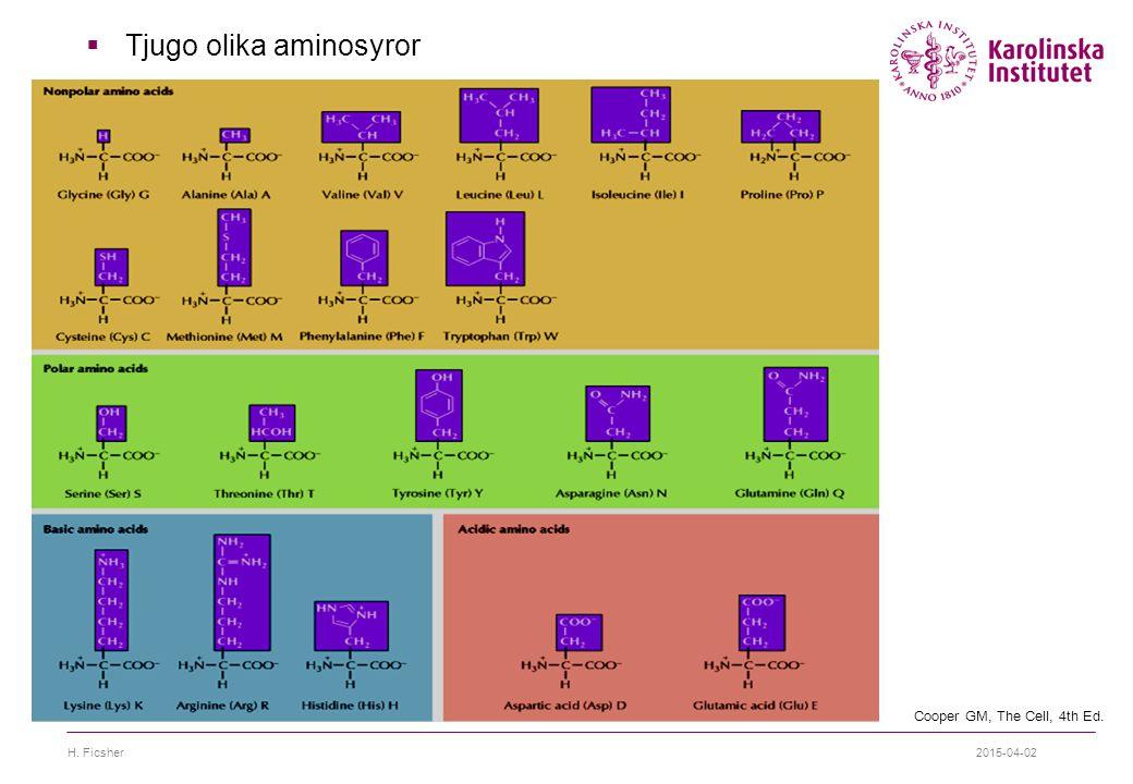 2015-04-02H. Ficsher  Tjugo olika aminosyror Cooper GM, The Cell, 4th Ed.
