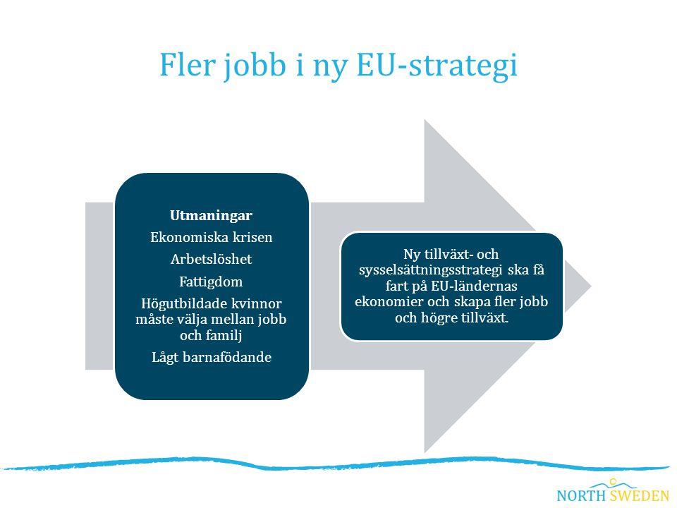 Utmaningar Ekonomiska krisen Arbetslöshet Fattigdom Högutbildade kvinnor måste välja mellan jobb och familj Lågt barnafödande Ny tillväxt- och sysselsättningsstrategi ska få fart på EU-ländernas ekonomier och skapa fler jobb och högre tillväxt.