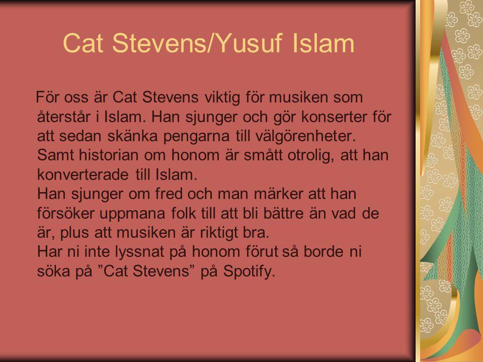 Cat Stevens/Yusuf Islam För oss är Cat Stevens viktig för musiken som återstår i Islam. Han sjunger och gör konserter för att sedan skänka pengarna ti