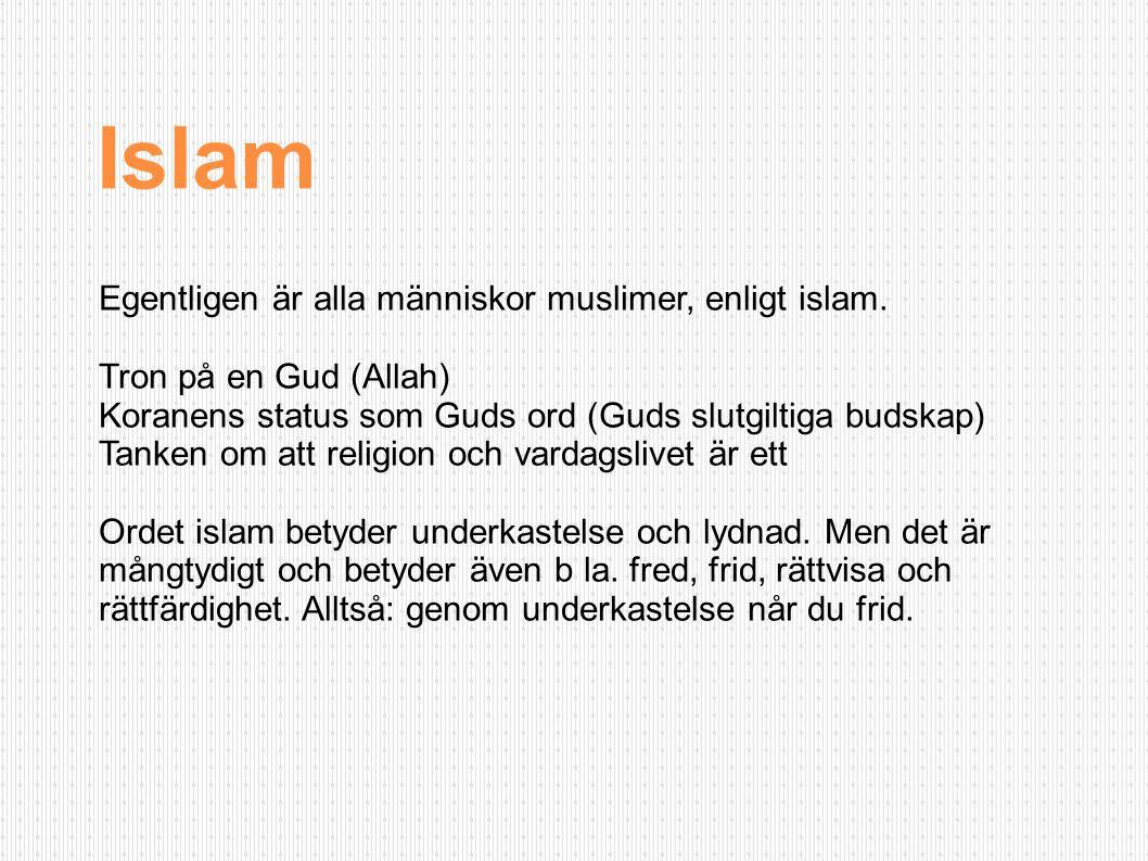 Egentligen är alla människor muslimer, enligt islam. Tron på en Gud (Allah) Koranens status som Guds ord (Guds slutgiltiga budskap) Tanken om att reli