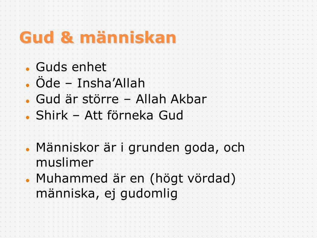 Gud & människan Guds enhet Öde – Insha'Allah Gud är större – Allah Akbar Shirk – Att förneka Gud Människor är i grunden goda, och muslimer Muhammed är