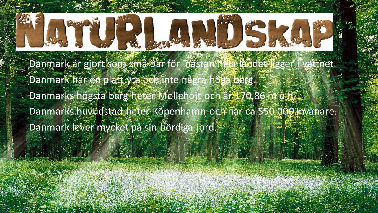 Danmark är gjort som små öar för nästan hela landet ligger i vattnet. Danmark har en platt yta och inte några höga berg. Danmarks högsta berg heter Mo